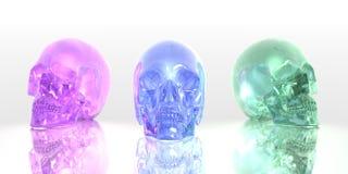 Glass skulls. 3D render of glass skulls on reflective surface vector illustration