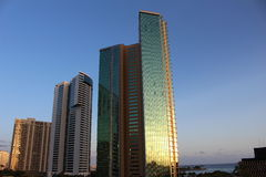 Glass Skyscrapers. Skyscrapers at sunset time, Honolulu Royalty Free Stock Photo