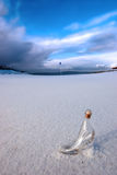 Glass slipper on snow covered golf fairway