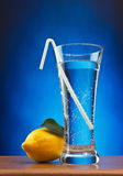 Glass of soda water. And lemon Royalty Free Stock Photos