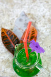 A glass of soda water and green foliage overlaid on a marble tab Stock Photography