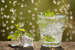 A glass of soda water on an old board, on the nature. A glass of soda water on an old board, on nature, ice, bubbles, grapefruit, spike, in the background, water Royalty Free Stock Images