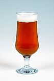 Glass of Spanish lager. Stock Images