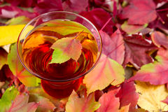 Glass of Sparkling Apple Cider with Autum Leaves Royalty Free Stock Photos