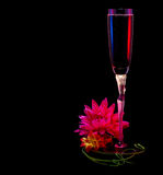 Glass of sparkling wine with flowers Stock Photo