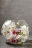 Glass sphere with floral arrangement inside Stock Image
