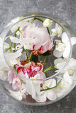 Glass sphere with floral arrangement inside Royalty Free Stock Photography