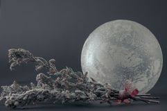 Glass sphere with frosty pattern. And snow-covered dry flowers royalty free stock image