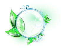 Glass sphere with green leaves Royalty Free Stock Photography