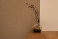 Glass Sphere vase and branch tree Royalty Free Stock Photo