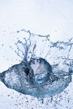 Glass sphere in water. Glass sphere in splash water Stock Image