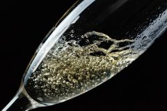 Glass of splashing champagne isolated on black. Background royalty free stock images