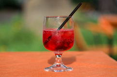 Glass of spritz. Fresh spritz cocktail with sparkling wine Stock Image