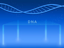 Glass stage with DNA Stock Images