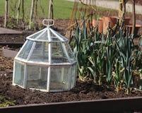 Glass sticklingshus i grönsakträdgård Arkivbild