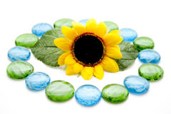 Glass stones with sunflower Stock Photos
