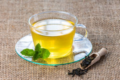 Glass tea cup mint leaves. Royalty Free Stock Photo