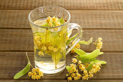 Glass of tea with linden flowers Royalty Free Stock Photography