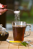 Glass of tea with sugar Stock Images