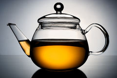 Glass teapot. With the infusion of tea in the light gradient background Royalty Free Stock Photos