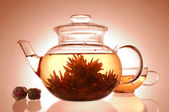 Glass teapot and cup. With blooming flower green tea on yellow background stock photography