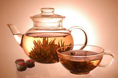 Glass teapot and cup. With blooming flower green tea on yellow background stock photo