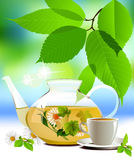 Glass teapot and cup with tea. Stock Image