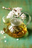 Glass teapot with exotic green tea Stock Images