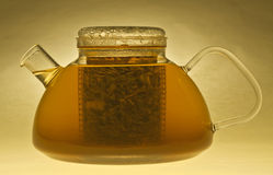 Glass Teapot with Green Tea. A glass teapot filled with green tea royalty free stock photo