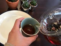 Glass Teapot Pouring Tea in Cup. stock photography