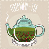 Glass teapot with tea currant Royalty Free Stock Image