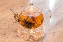 Glass teapot with tea. Glass teapot with green tea on a stand royalty free stock images