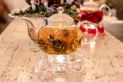Glass teapot with tea Stock Photos