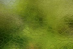 Glass texture from a murky green window Stock Photography