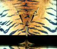 Glass on tiger skin. Drink in glass on tiger skin Royalty Free Stock Photo