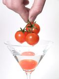 glass tomat Arkivbild