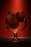 glass tomater Arkivfoton