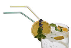 A glass of tonic water. Royalty Free Stock Image