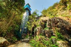 Glass torn bland gröna trän Utomhus- hiss i skog Arkivfoto