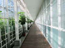 Glass tourist corridor in Agricultural Park Stock Photo