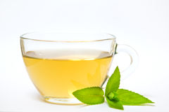 Glass transparent cup with tea and green mint leaf Royalty Free Stock Photography