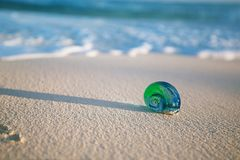 Glass tropical sea  shell with waves under sun light Royalty Free Stock Images