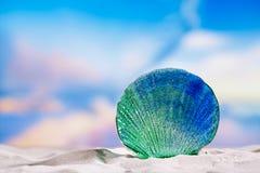 Glass tropical sea  shell on white  beach sand under the sun lig Stock Image