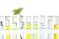 Glass tubes with colored solutions Royalty Free Stock Image