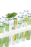Glass tubes with colored solutions Stock Photography