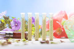 Glass tubes with homeopathy globules Royalty Free Stock Photography