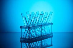 Glass tubes with liquid on stand in chemical laboratory royalty free stock image