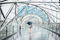 Glass Tunnel Bridge