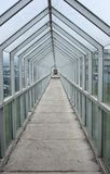 Glass walkway tunnel. Protected glass outdoor pedestrian walkway Stock Photo