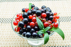 Glass vase with black and red currant. On a napkin royalty free stock photos